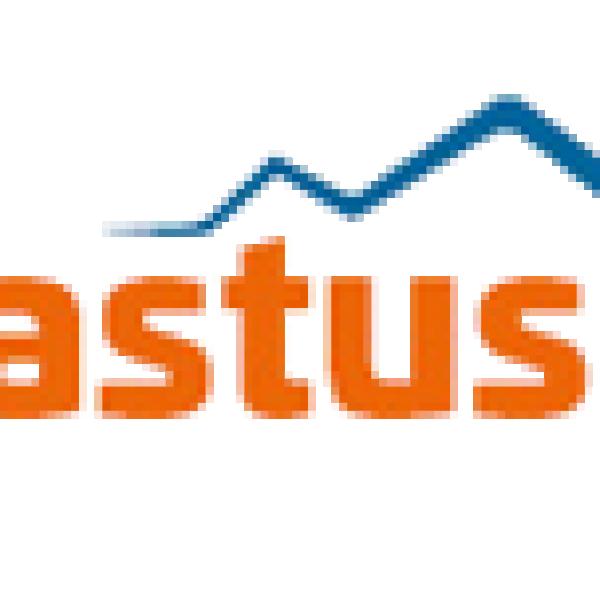 Vastus LTD