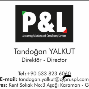 P&L Accounting Solutions & Consultancy Services